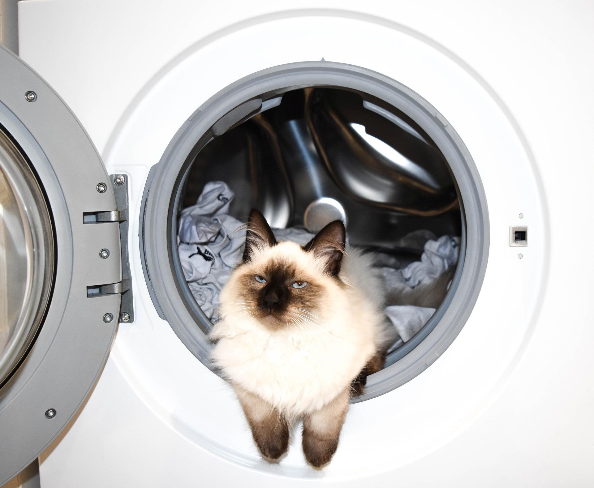 entretenir son lave linge naturellement percarbonate de soude