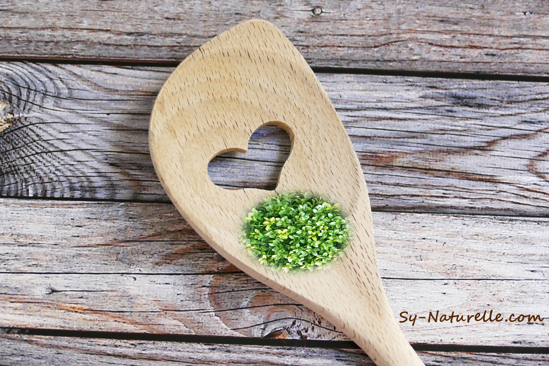 ecogeste cuisine green